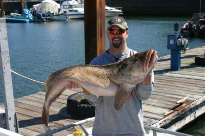 Large Lingcod Oregon Coast